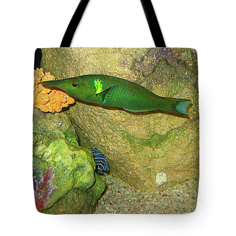 Fish Tote Bag featuring the photograph Green Fish by Denise Keegan Frawley