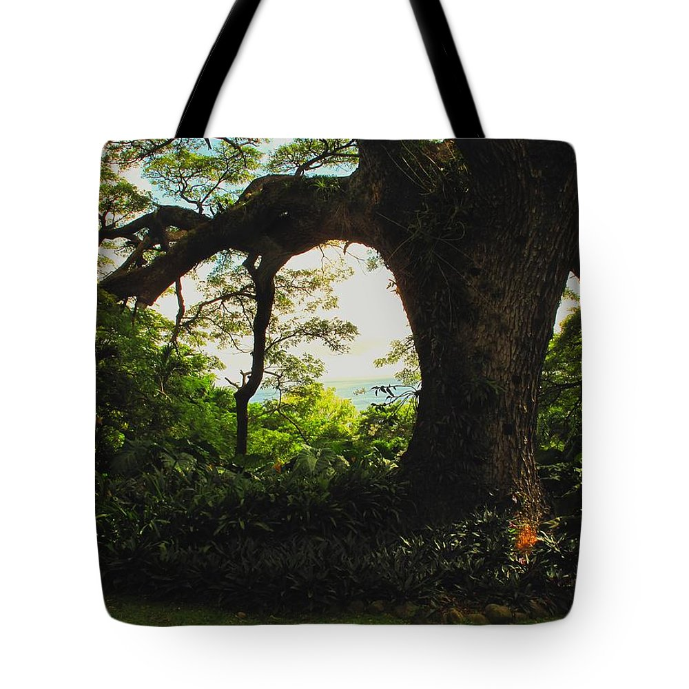 Tropical Tote Bag featuring the photograph Green Giant by Ian MacDonald