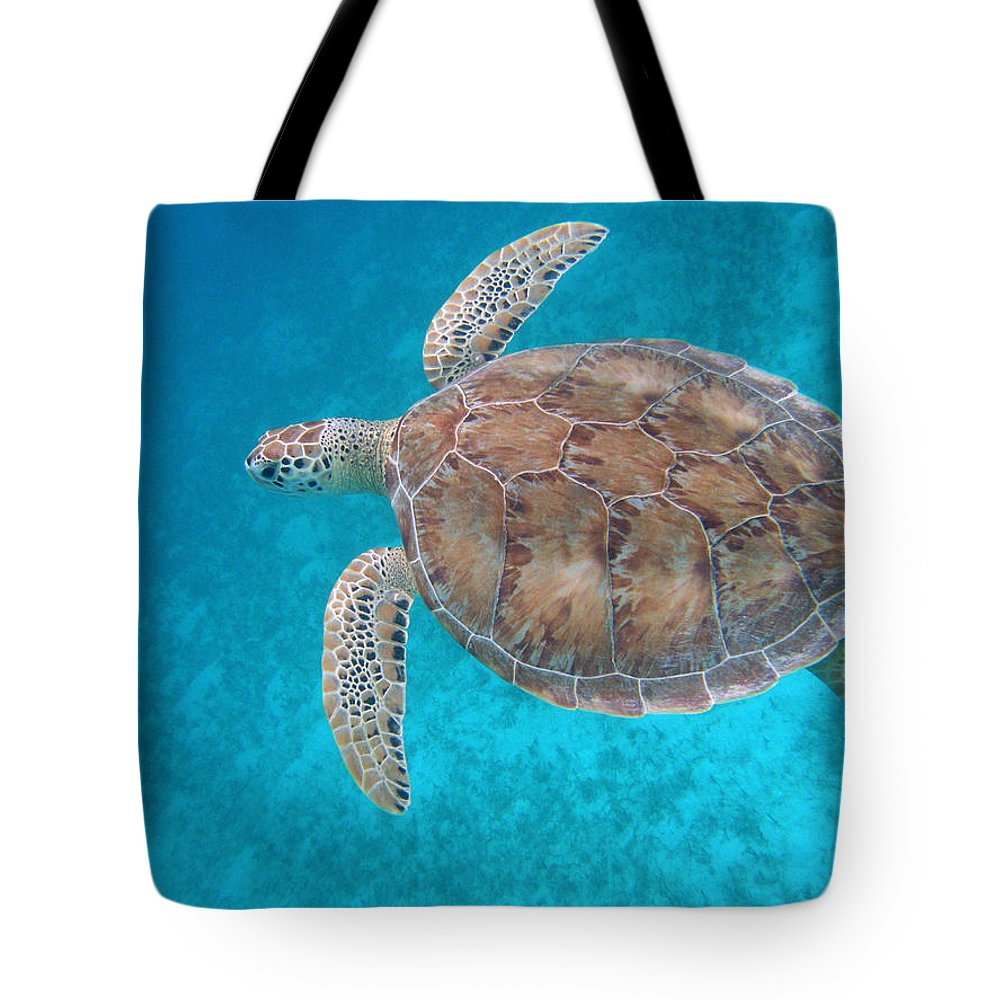 Green Sea Turtle Tote Bag featuring the photograph Green In Blue by Kimberly Mohlenhoff