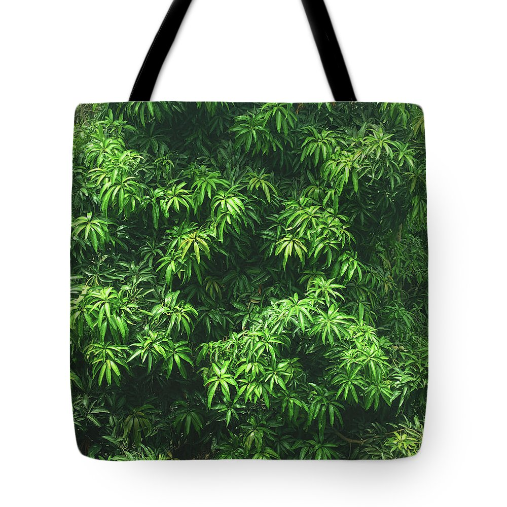 Green Tote Bag featuring the photograph Green Is Life by Happy Home Artistry