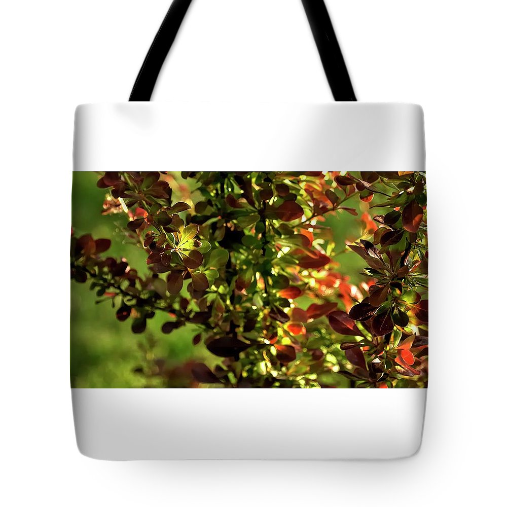 Willamette Tote Bag featuring the photograph Green Leaf Red Leaf by Jerry Sodorff