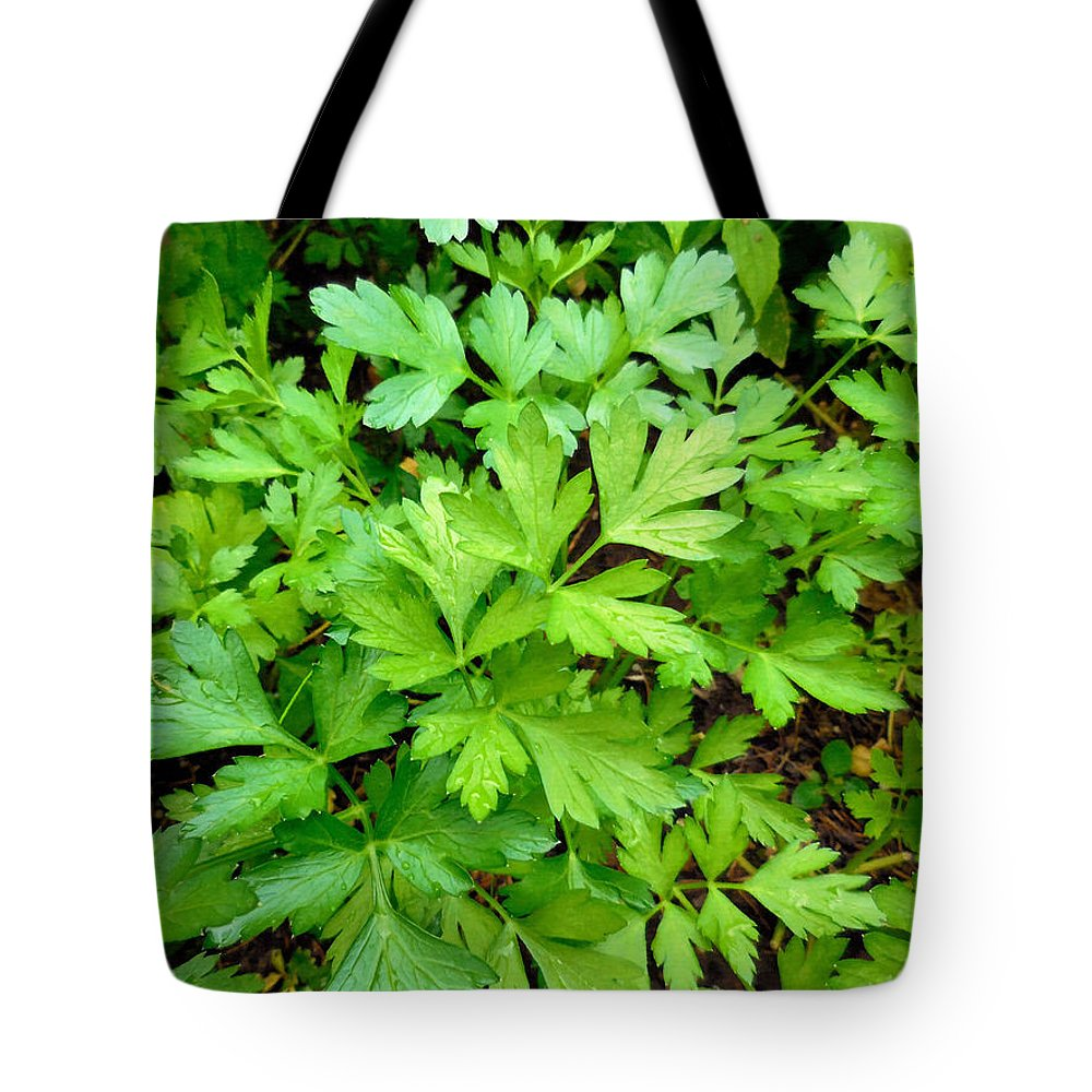 Parsley Tote Bag featuring the painting Green Parsley 3 by Jeelan Clark