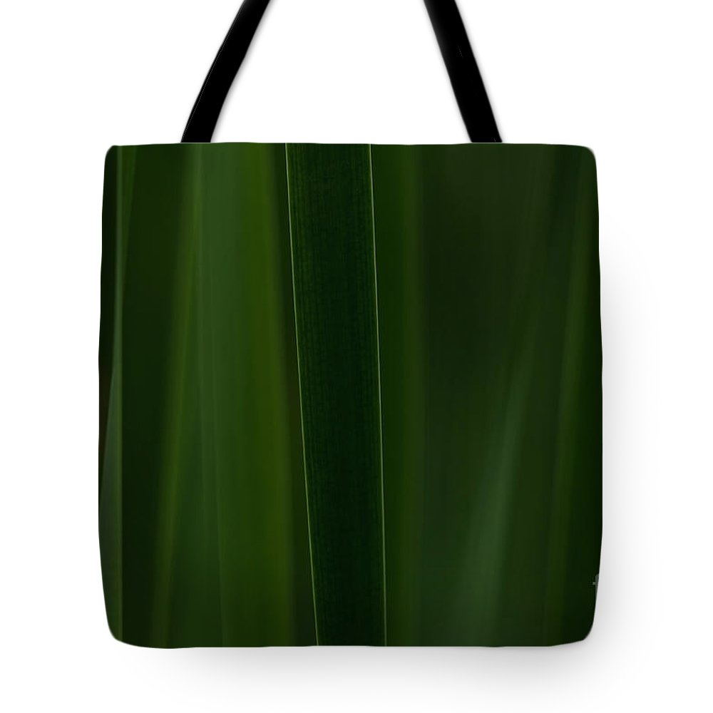 Festblues Tote Bag featuring the photograph Green Velvet... by Nina Stavlund