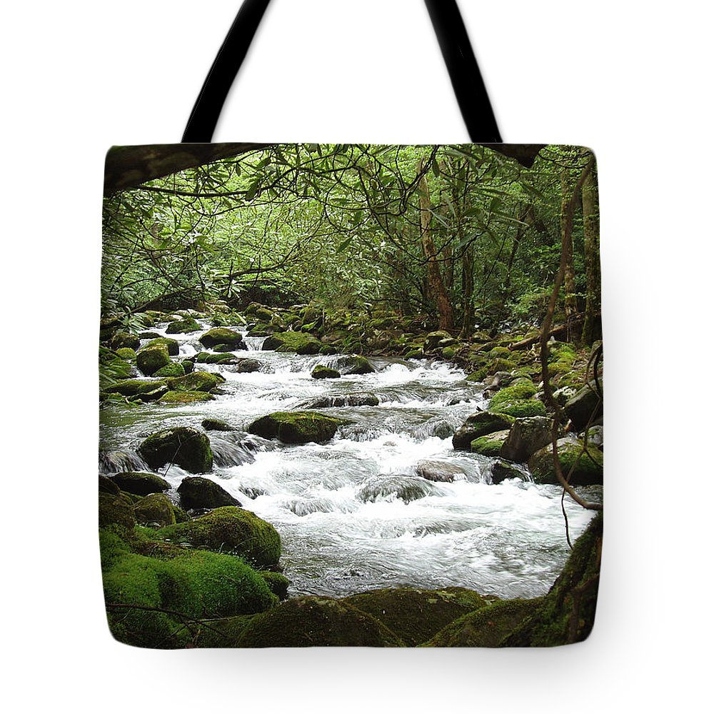 Smoky Mountains Tote Bag featuring the photograph Greenbrier River Scene 2 by Nancy Mueller