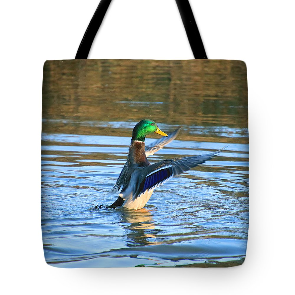 Tote Bag featuring the photograph Greeney Drying Off by Tony Umana
