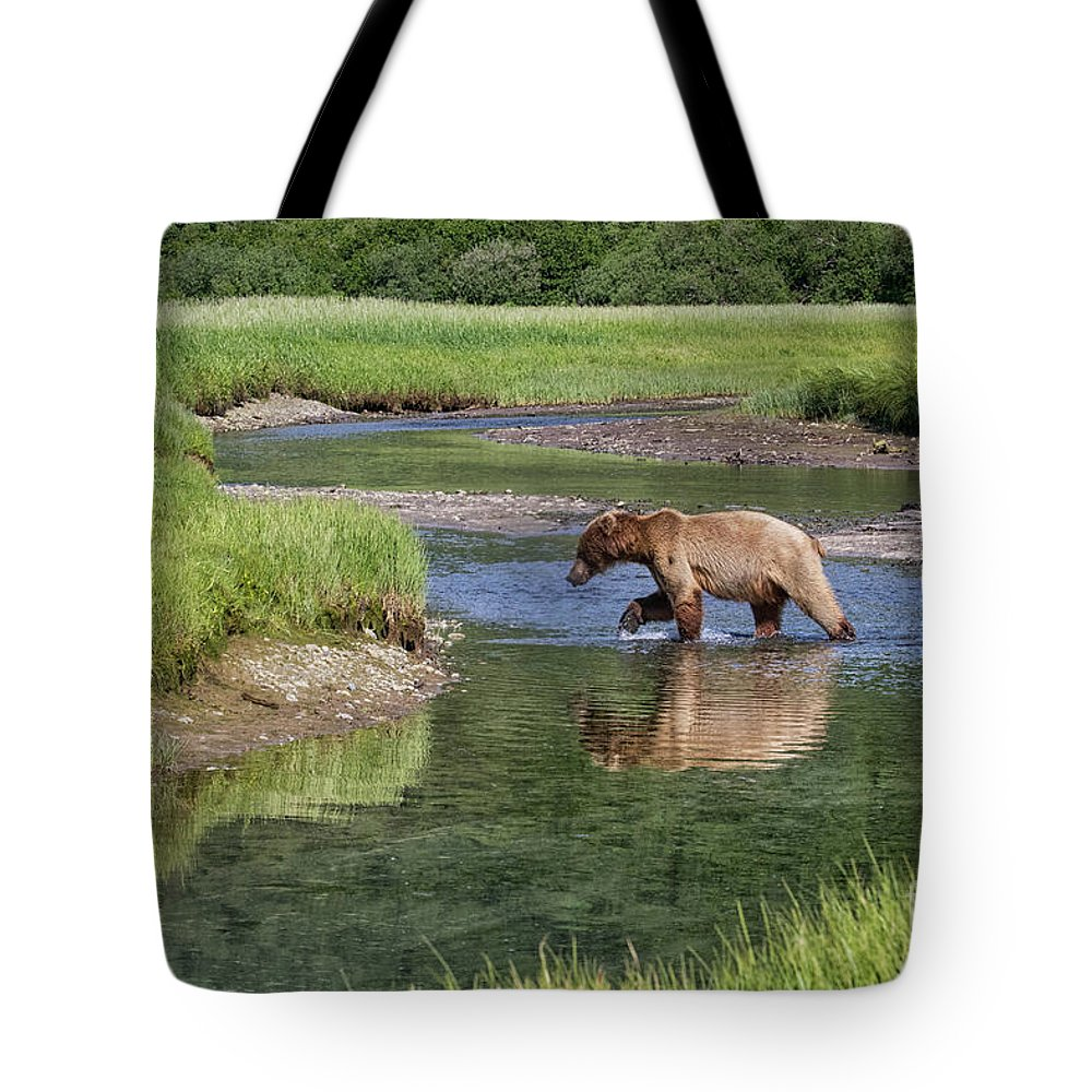 Alaska Adventure Tote Bag featuring the photograph Grizzy Bear Crossing The River by Rob Daugherty
