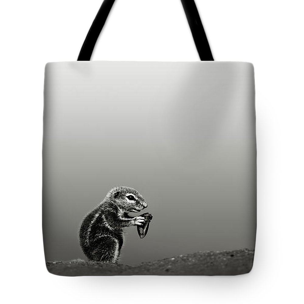 Squirrel; Ground; Feed; Eat; Hold; Food; Nut; Seed; Desert; Dune; Art; Artistic; Monochrome; Black; White; B&w; Inaurus; Inquisitive; Mammal; Animal; Small; Sand; Sit; Little; Rodent; Upright; Watchful; Wild; Wildlife; Xerus; Kalahari; Africa Tote Bag featuring the photograph Ground Squirrel by Johan Swanepoel