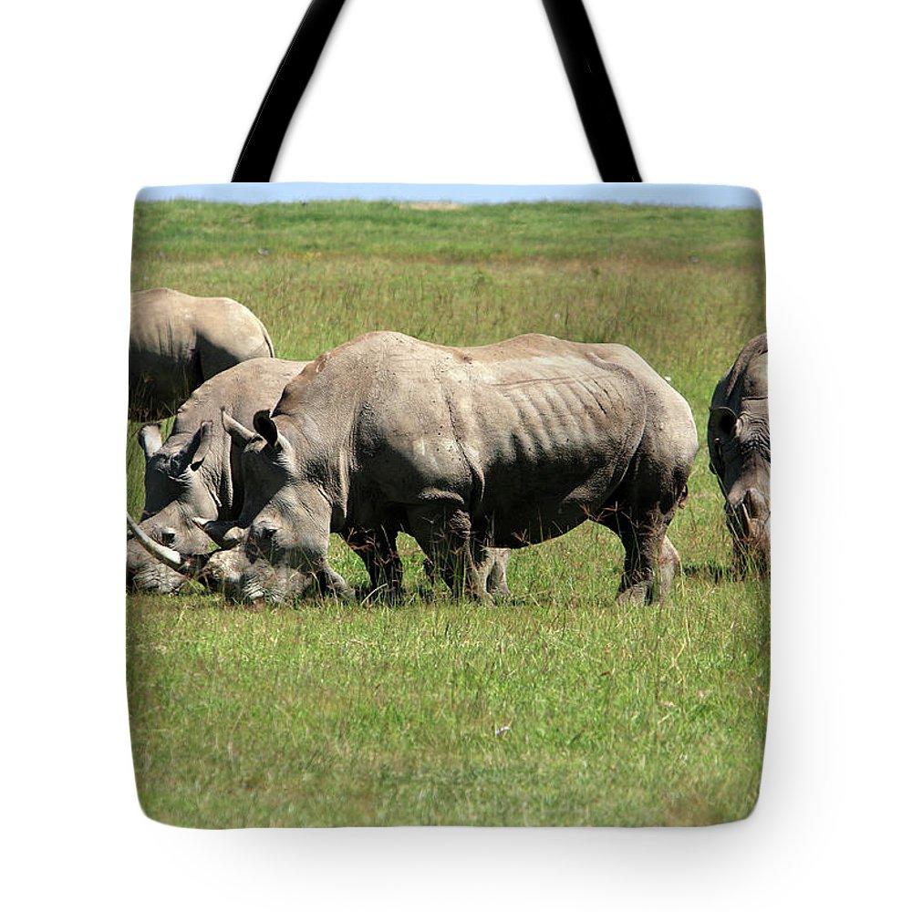 Kenya Tote Bag featuring the photograph Group Of White Rhino by Aidan Moran