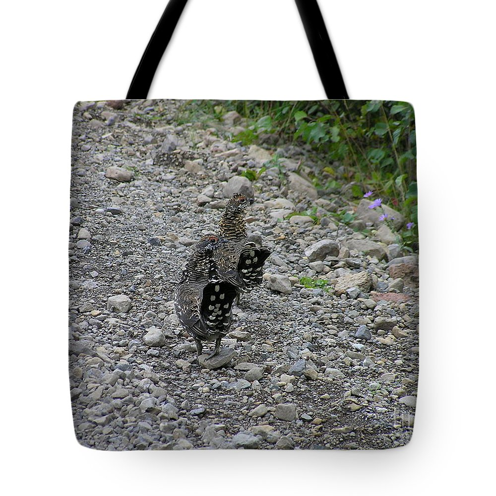 Grouse Tote Bag featuring the photograph Grouse Pair by Louise Magno