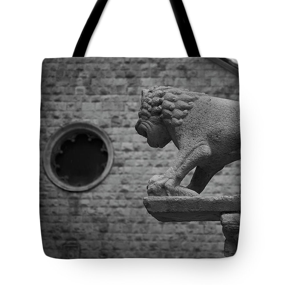 Ancient Tote Bag featuring the photograph Growling At The Threat by Davide Carini