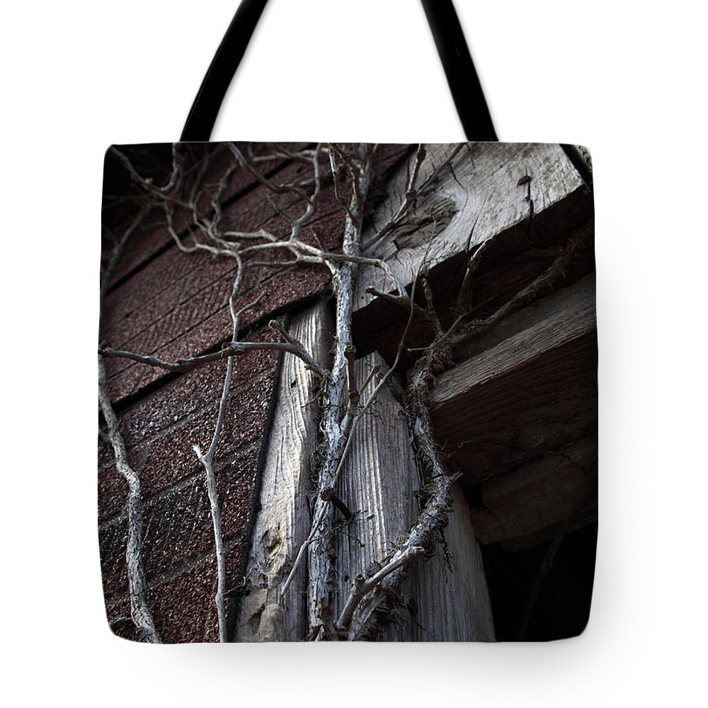 Broken Tote Bag featuring the photograph Growth by Amanda Barcon