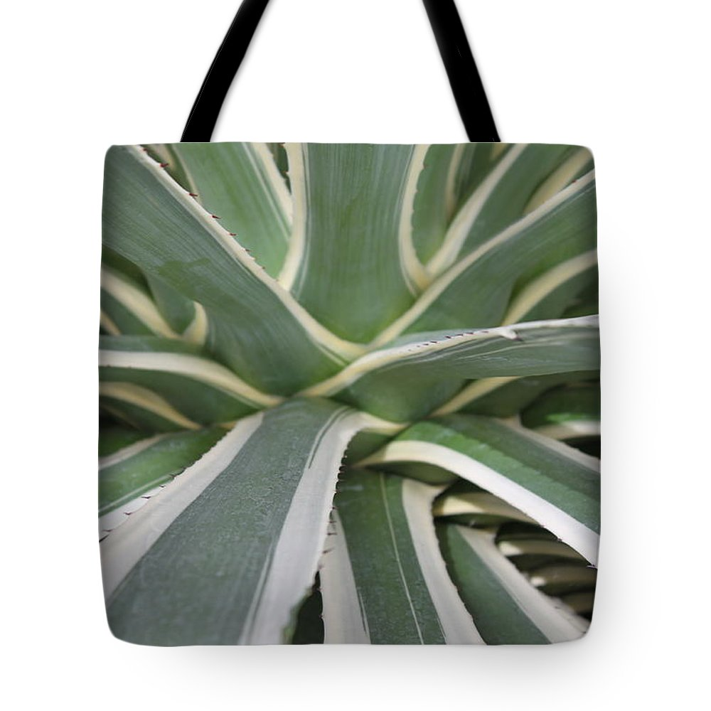 Nature Tote Bag featuring the photograph Growth by Munir Alawi
