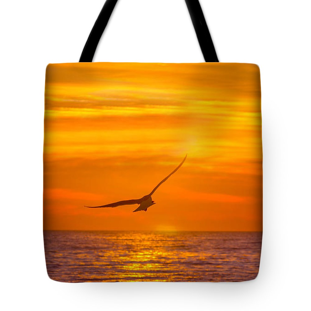 Atlantic Ocean Tote Bag featuring the photograph Gull At Sunrise by Allan Levin