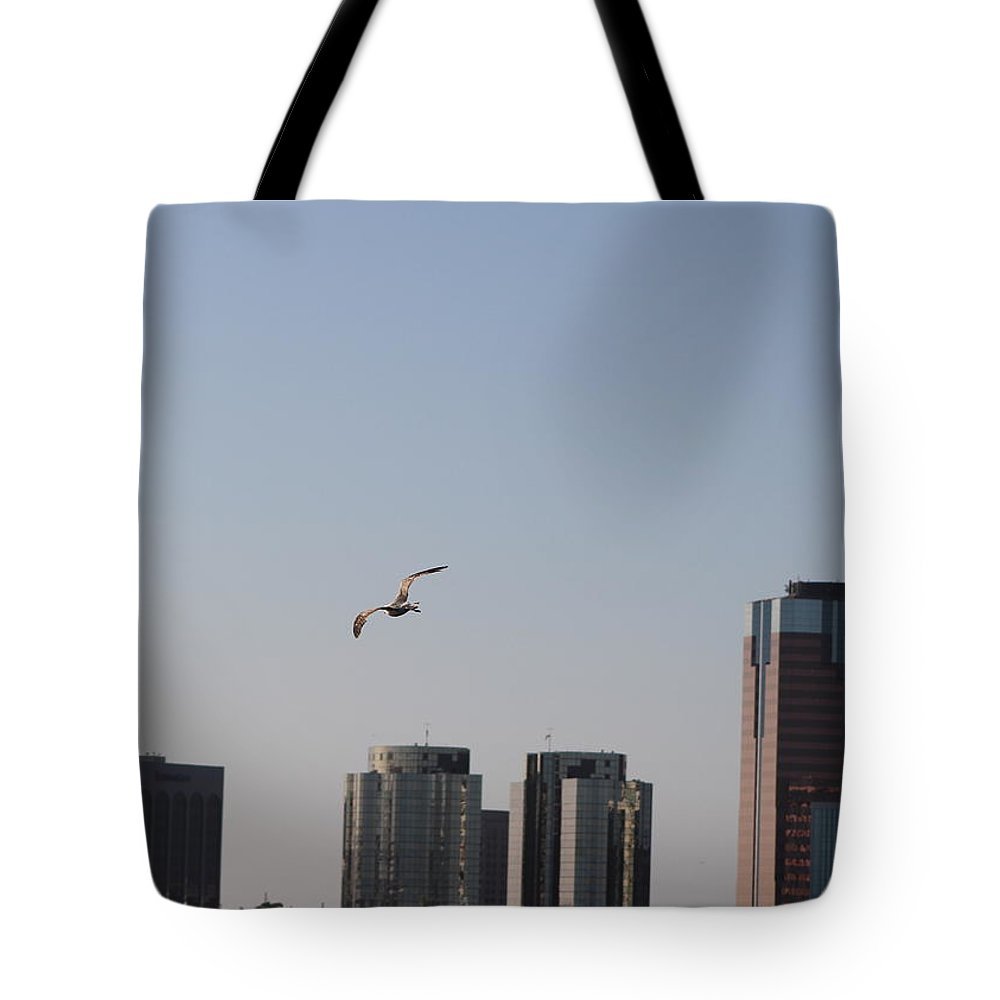Seagull Tote Bag featuring the photograph Gull In Flight Over Pacific by Colleen Cornelius