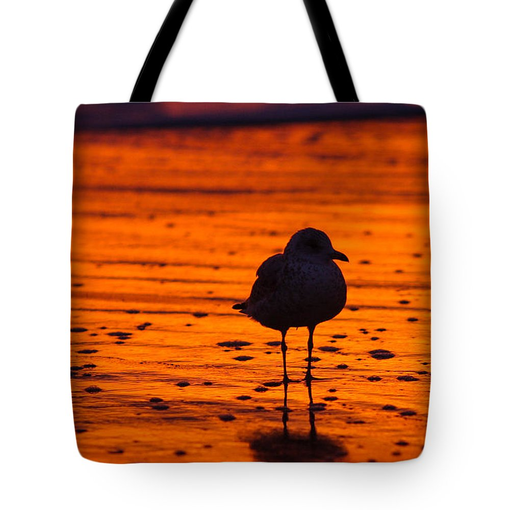 Great Tote Bag featuring the photograph Gull Caught At Sunrise by Allan Levin