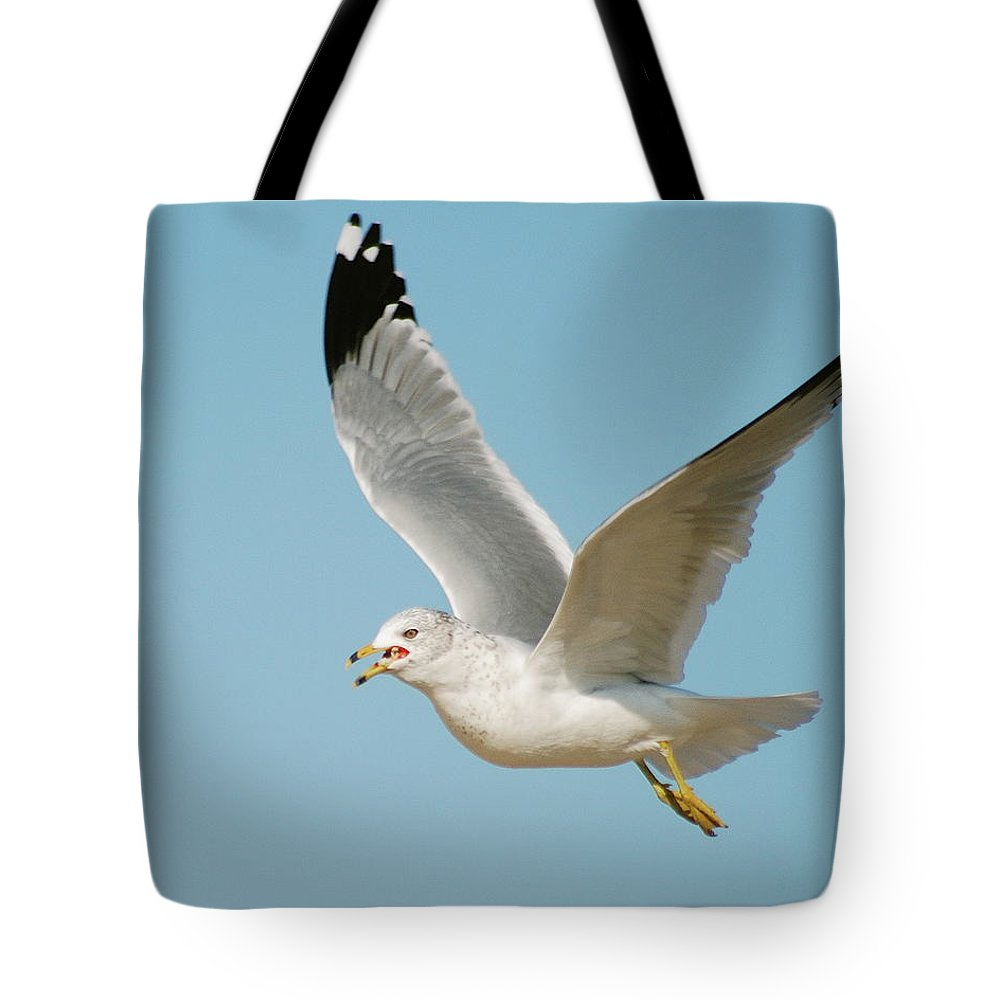 Air Tote Bag featuring the photograph Gull by Michael Peychich