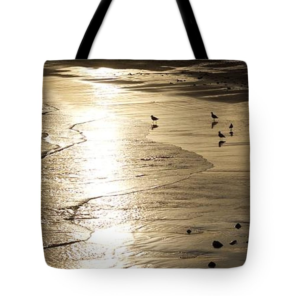 Seascape Of Gulls At Long Beach In Gloucester Tote Bag featuring the photograph Gulls At Gloucester by John Taylor