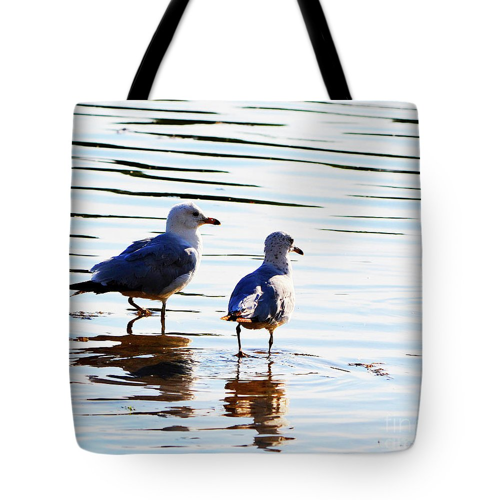 Beach Tote Bag featuring the photograph Gulls by Traci Cottingham