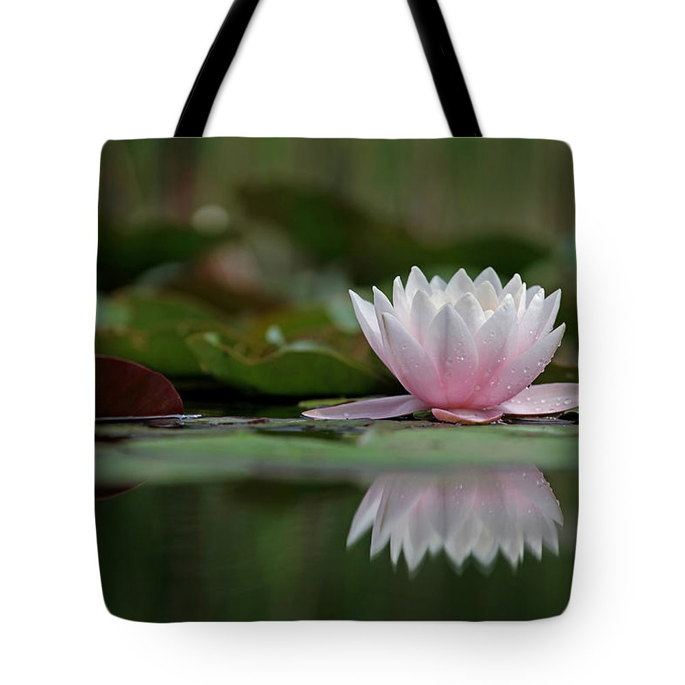 Tote Bag featuring the photograph H A R M O N Y by Thomas Herzog