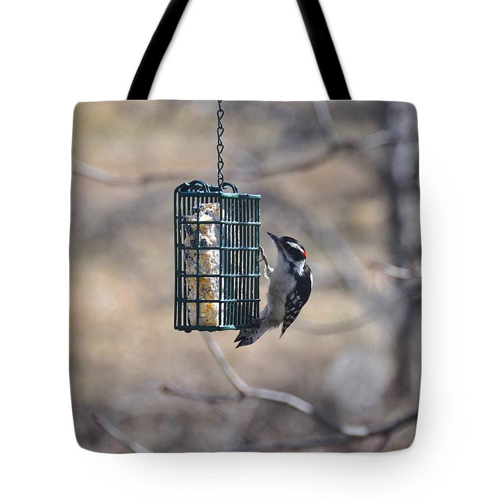 Bird Tote Bag featuring the photograph Hairy Woodpecker 1 by Rich Bodane