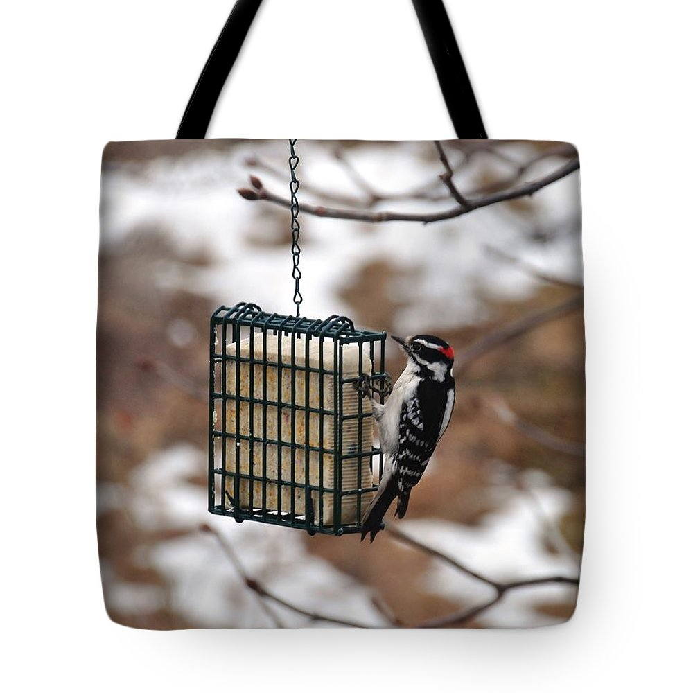 Bird Tote Bag featuring the photograph Hairy Woodpecker 2 by Rich Bodane