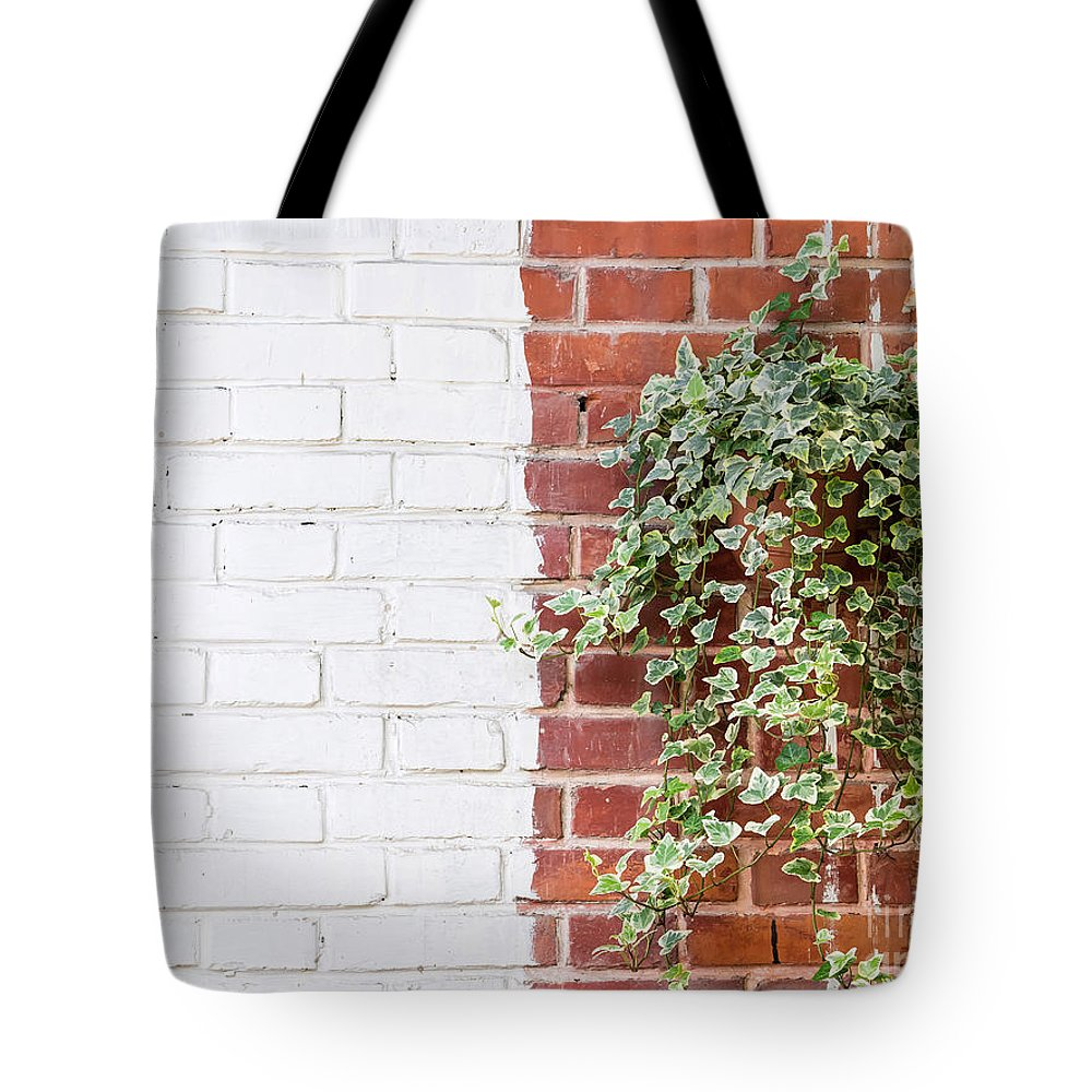 Nature Tote Bag featuring the photograph Half And Half by Chon Kit Leong