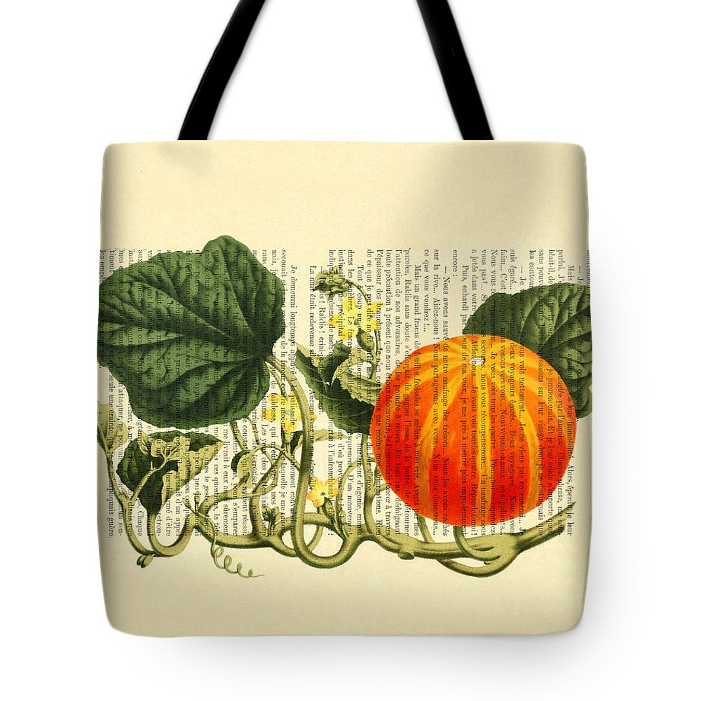 Fall Pumpkin Tote Bag featuring the digital art Halloween Pumpkin Antique Illustration by Madame Memento