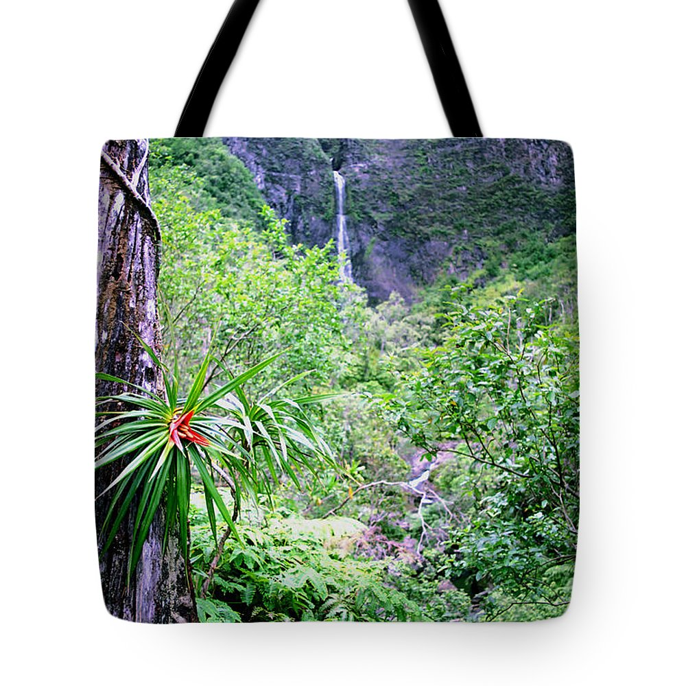 Hawaii Tote Bag featuring the photograph Hanakapiai Valley by Kevin Smith