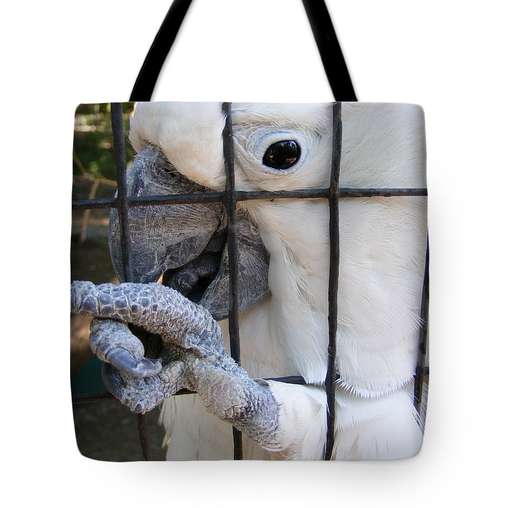 Bird Tote Bag featuring the photograph Hand Me The Key Please by Ed Smith