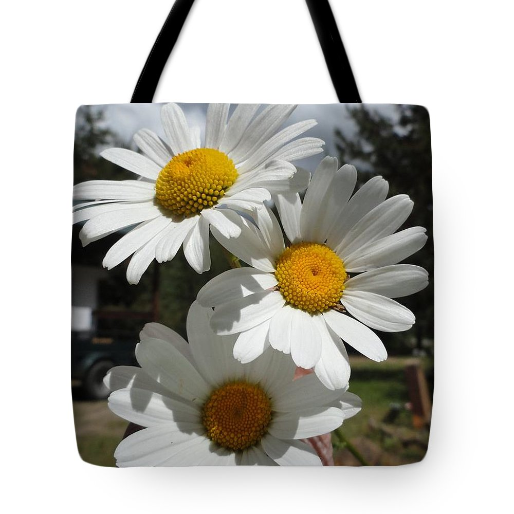 Flowers Tote Bag featuring the painting Handful Of Daisies by Carol Avants
