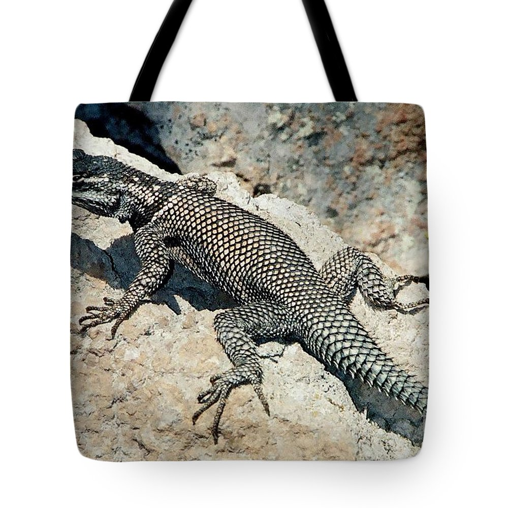 Lizard Tote Bag featuring the photograph Handsome Devil by Frank Townsley