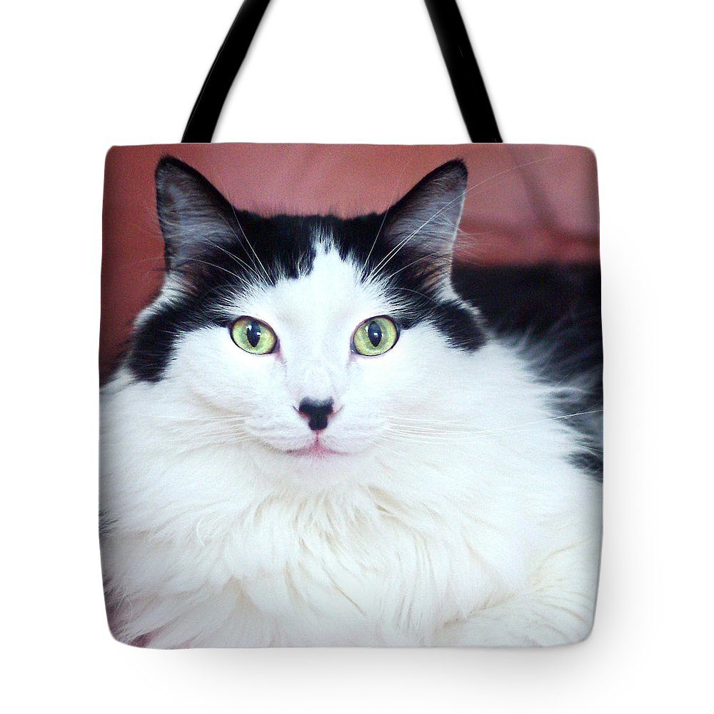 Cat Tote Bag featuring the photograph Handsome Tuxy by Byron Varvarigos