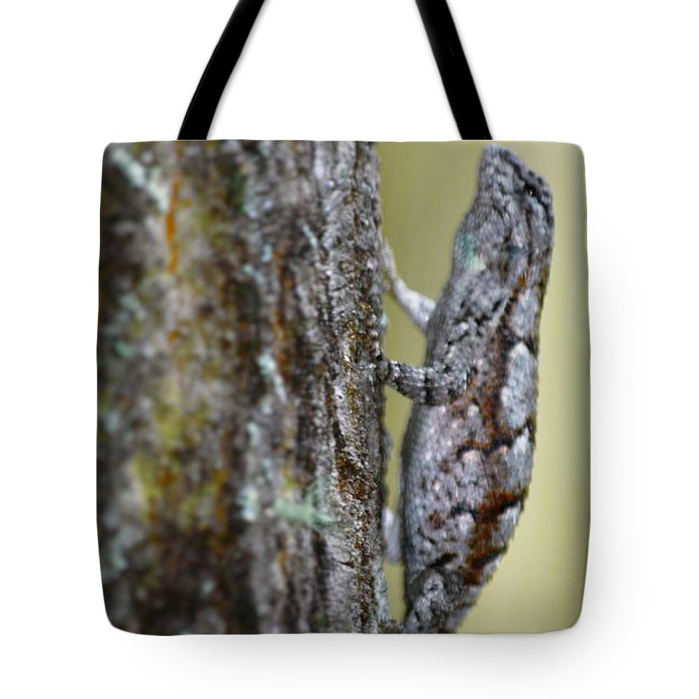Reptile Tote Bag featuring the photograph Hanging by Jason Bellantoni