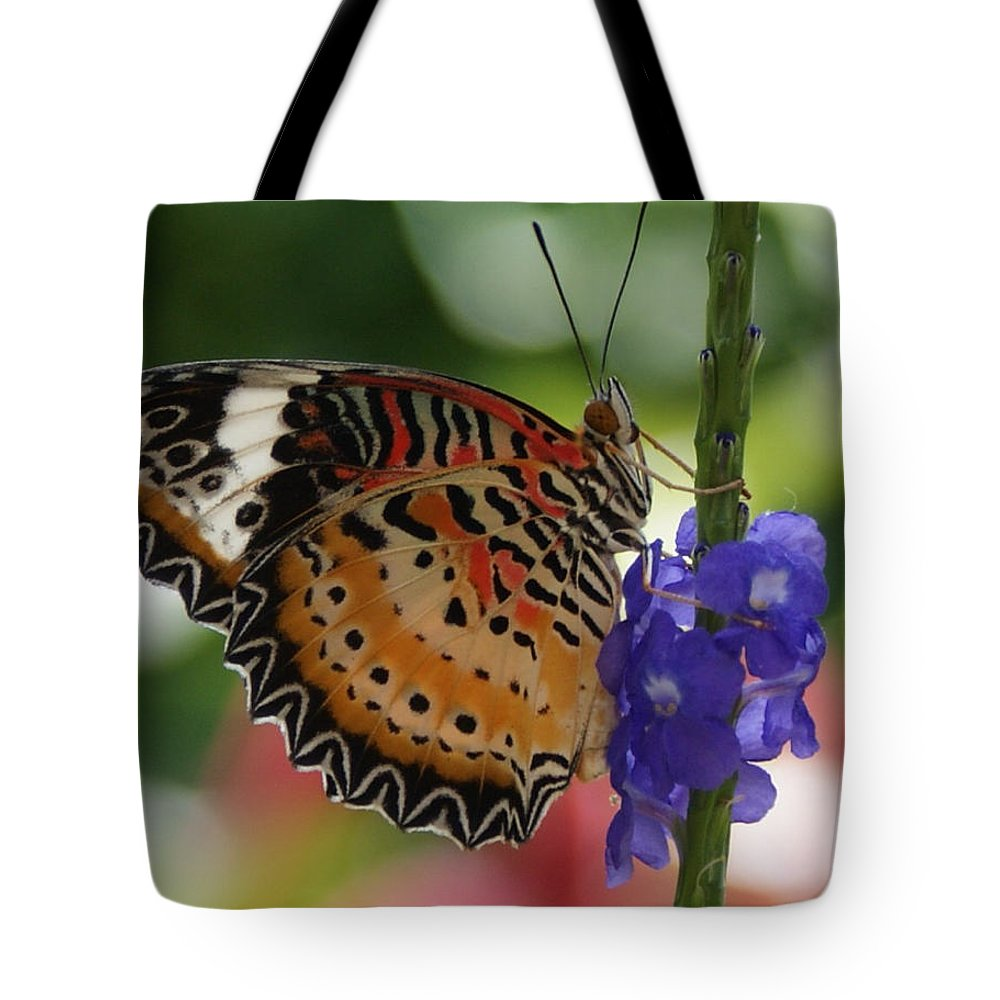 Butterfly Tote Bag featuring the photograph Hanging On by Shelley Jones