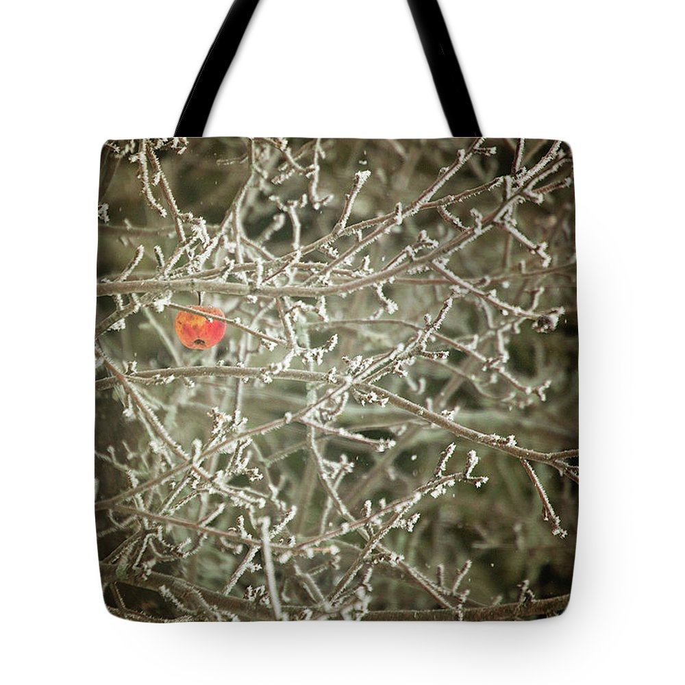 Fruit Tote Bag featuring the photograph Hanging On by Sue Collura