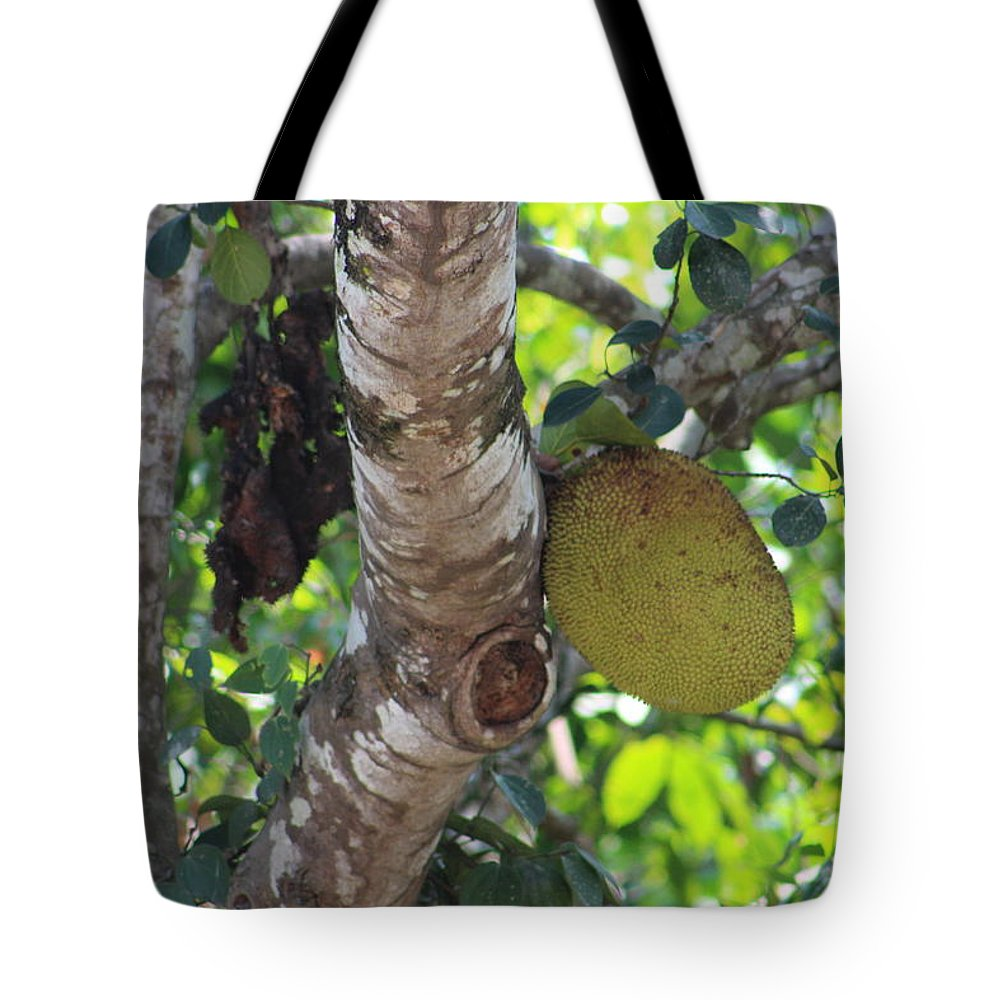 Jack Frute Tote Bag featuring the photograph Hanging Rock by Manoj John