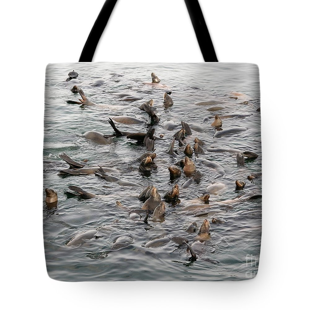 Tote Bag featuring the photograph Happy Harbour Seals by Carol Groenen