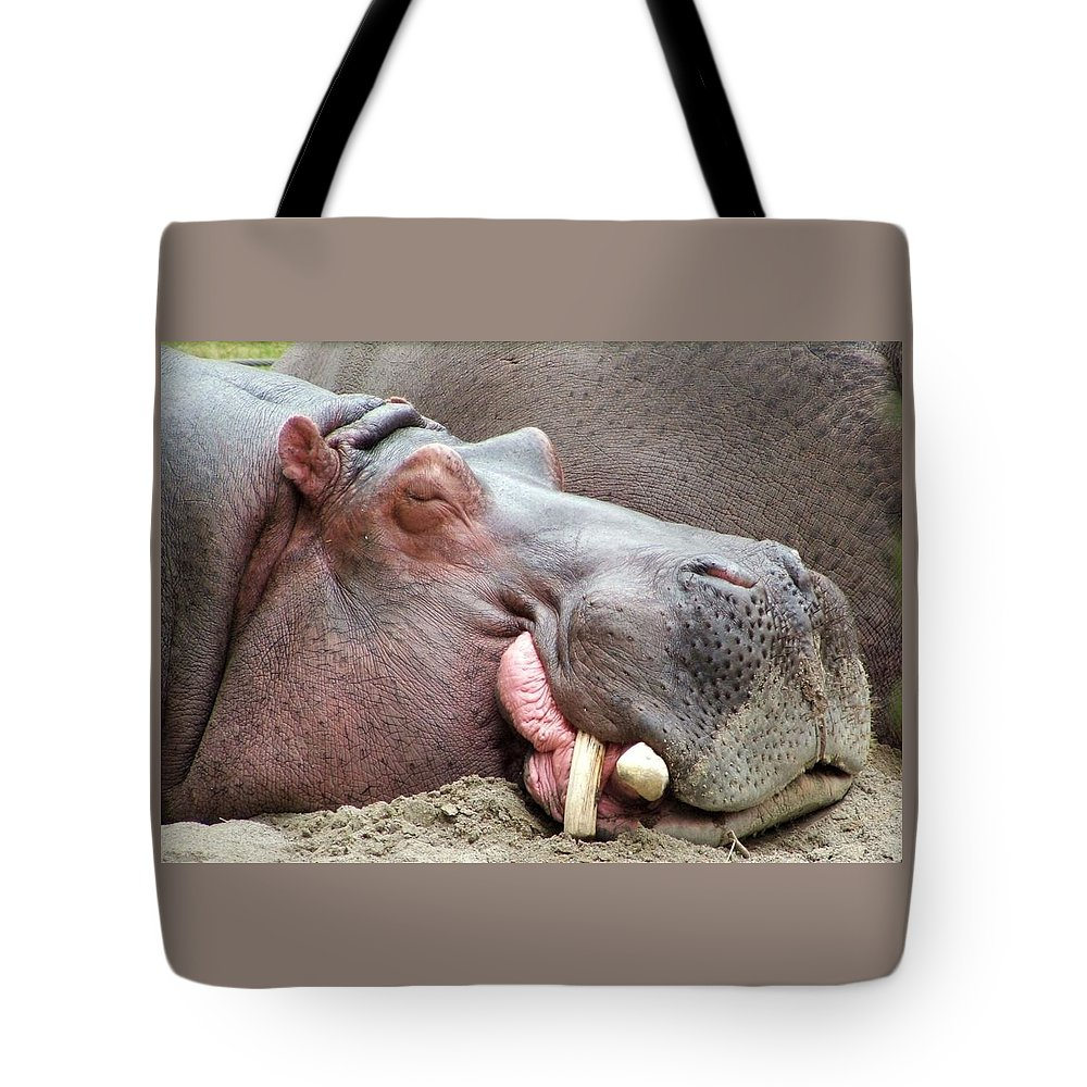 Hippopotamus Tote Bag featuring the photograph Happy Hippo by Tiffany Vest