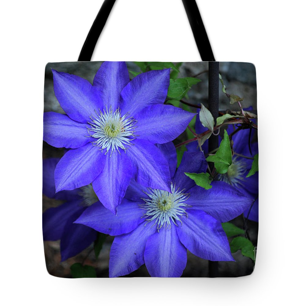 Clematis Tote Bag featuring the photograph Happy To Be Here by Lori Tambakis