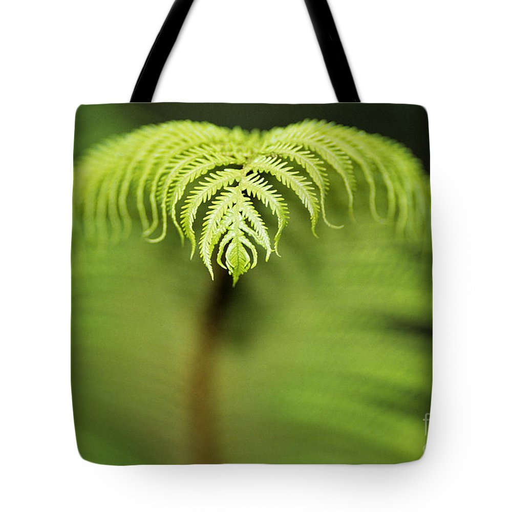 Abstract Tote Bag featuring the photograph Hapuu Fern by William Waterfall - Printscapes