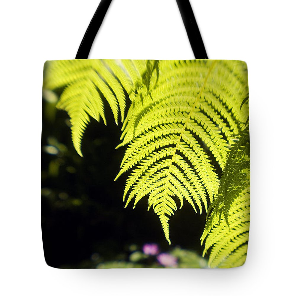 Abstract Tote Bag featuring the photograph Hapuu Ferns by Ron Dahlquist - Printscapes