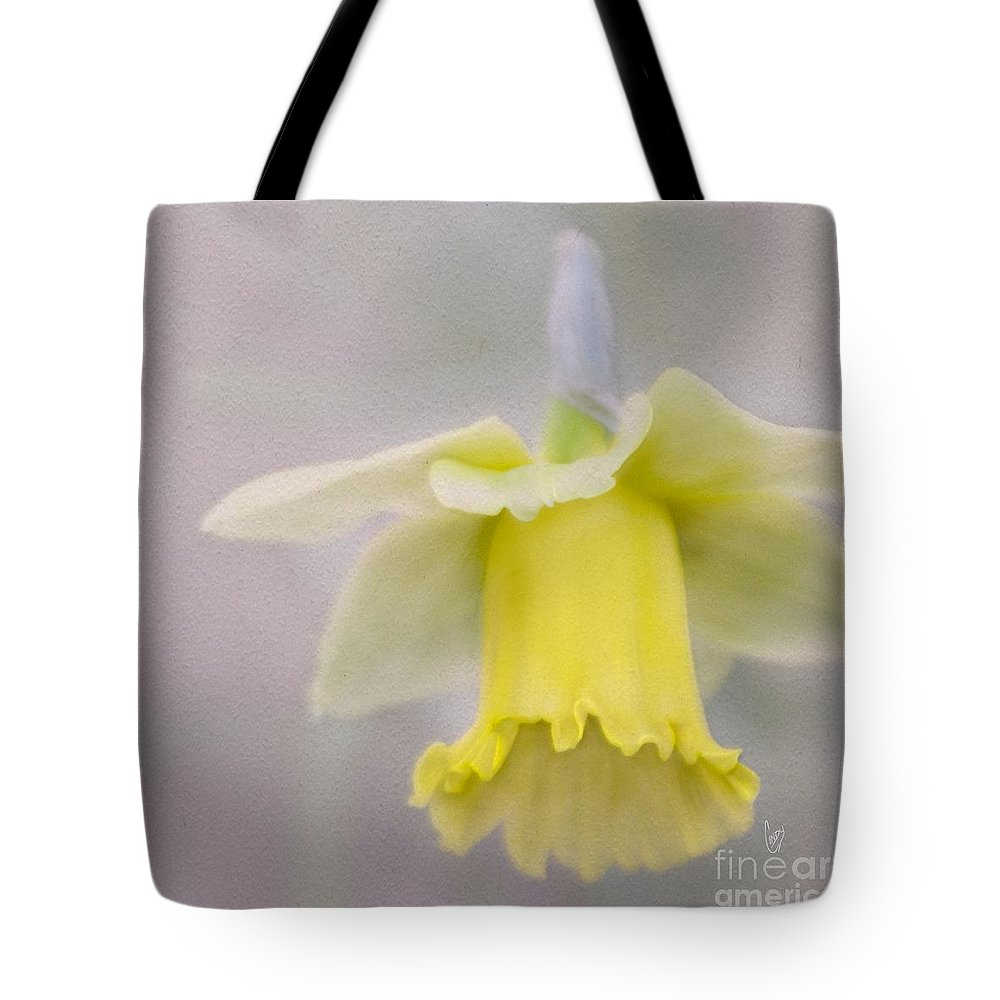 Daffodil Tote Bag featuring the photograph Harbinger Of Spring by Cindy Garber Iverson