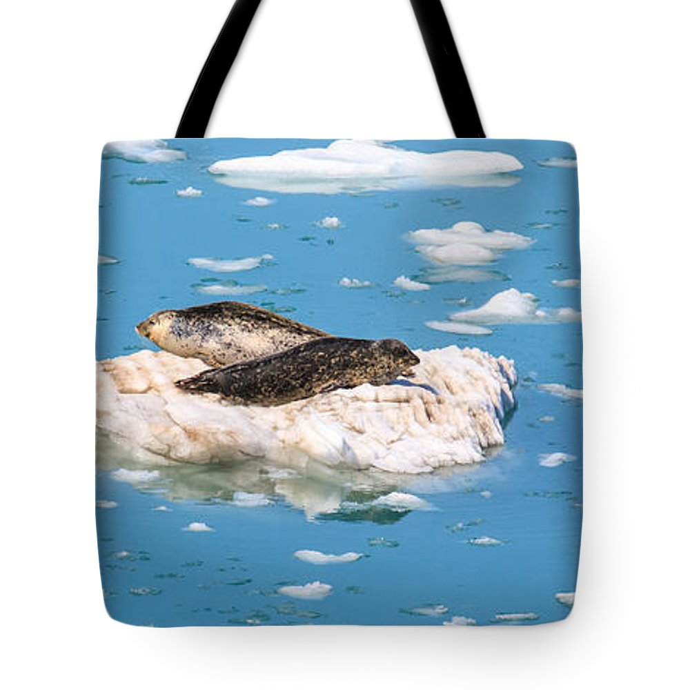 Harbor Seal Tote Bag featuring the photograph Harbor Seals On Clouds Of Ice by Allan Levin