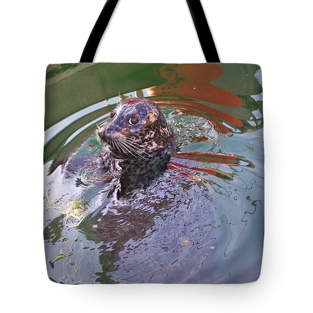 Harbour Seal Tote Bag featuring the photograph Harbour Seal by Julia Thompson
