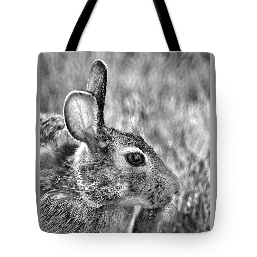 Hare Tote Bag featuring the photograph Hare by Jamieson Brown