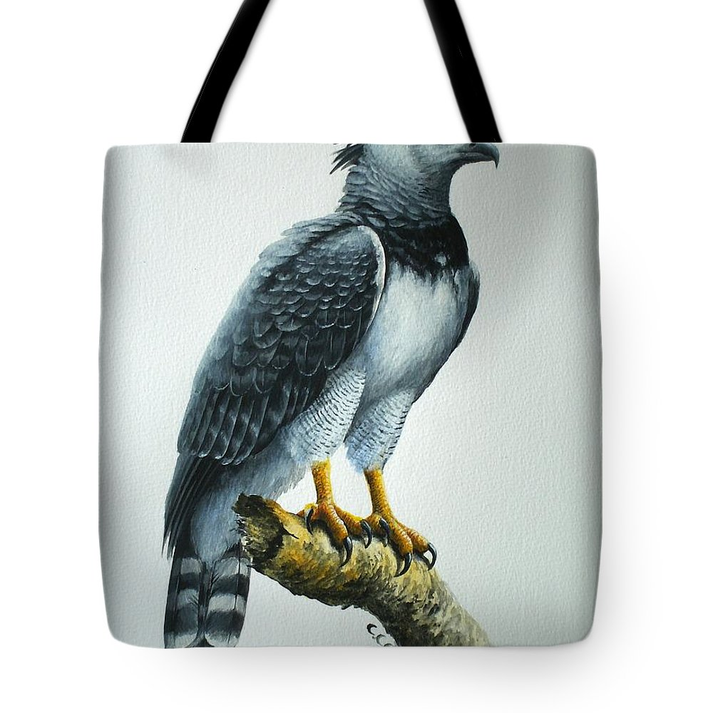 Harpy Eagle Tote Bag featuring the painting Harpy Eagle by Christopher Cox