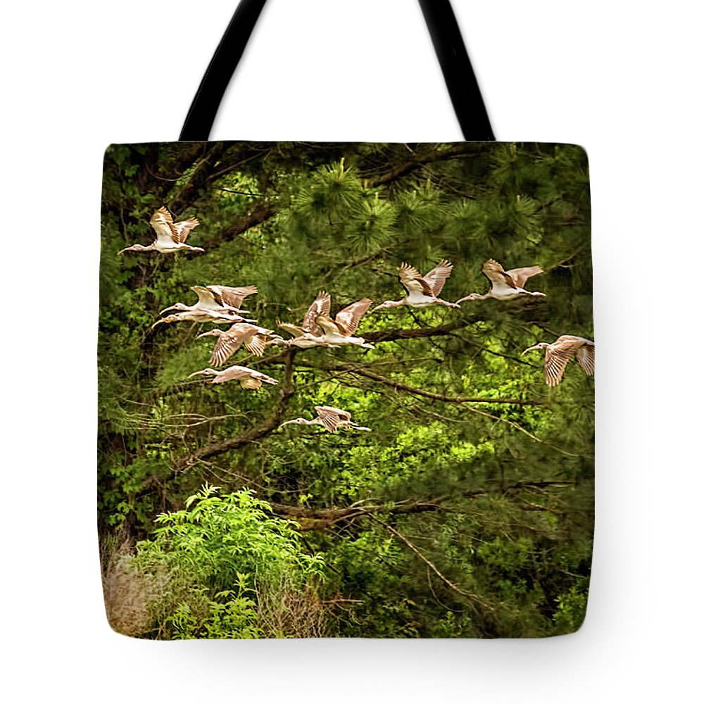 Ibis Tote Bag featuring the photograph Harris Neck Ibis In Flight by Priscilla Burgers