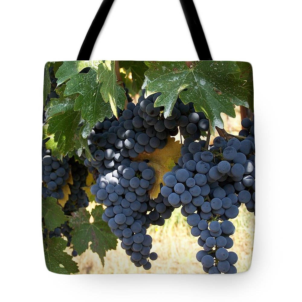 Grapes Tote Bag featuring the photograph Harvest Time by Gale Cochran-Smith
