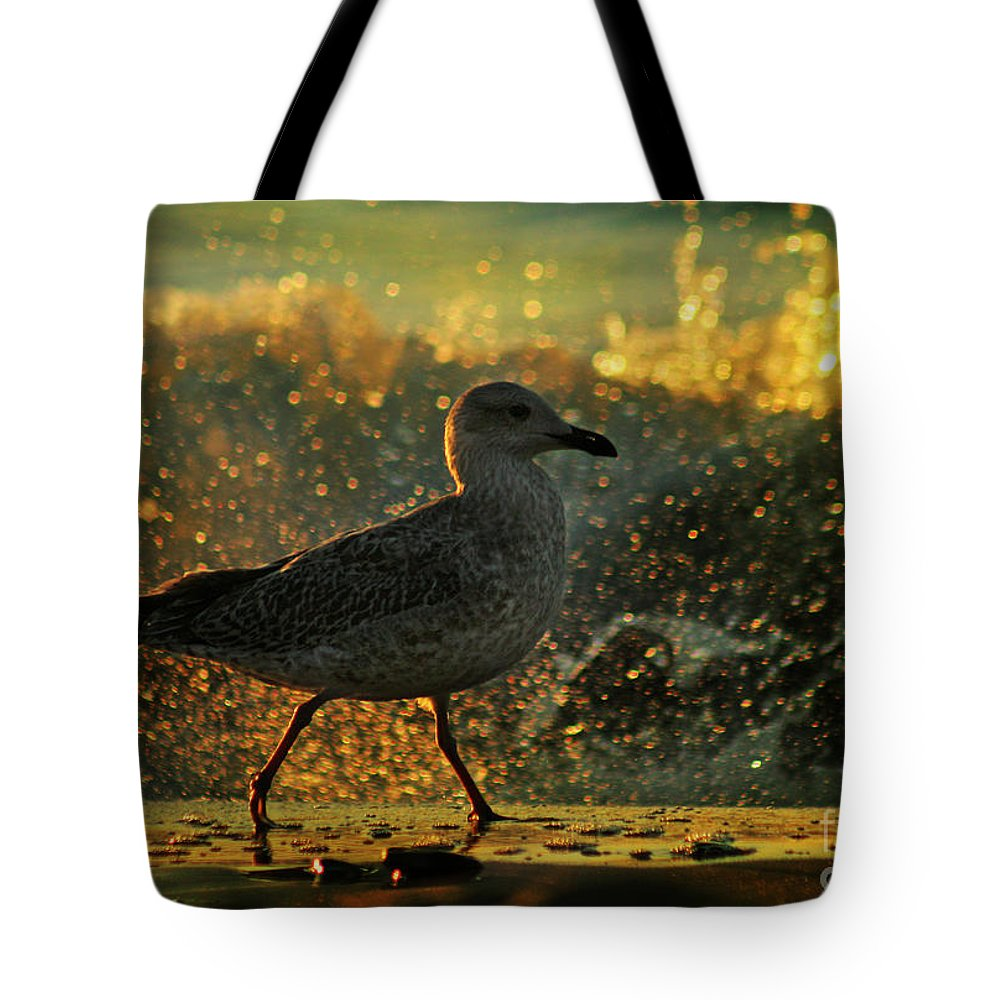 Seagull Tote Bag featuring the photograph Have A Walk By Th Sea by Angel Ciesniarska