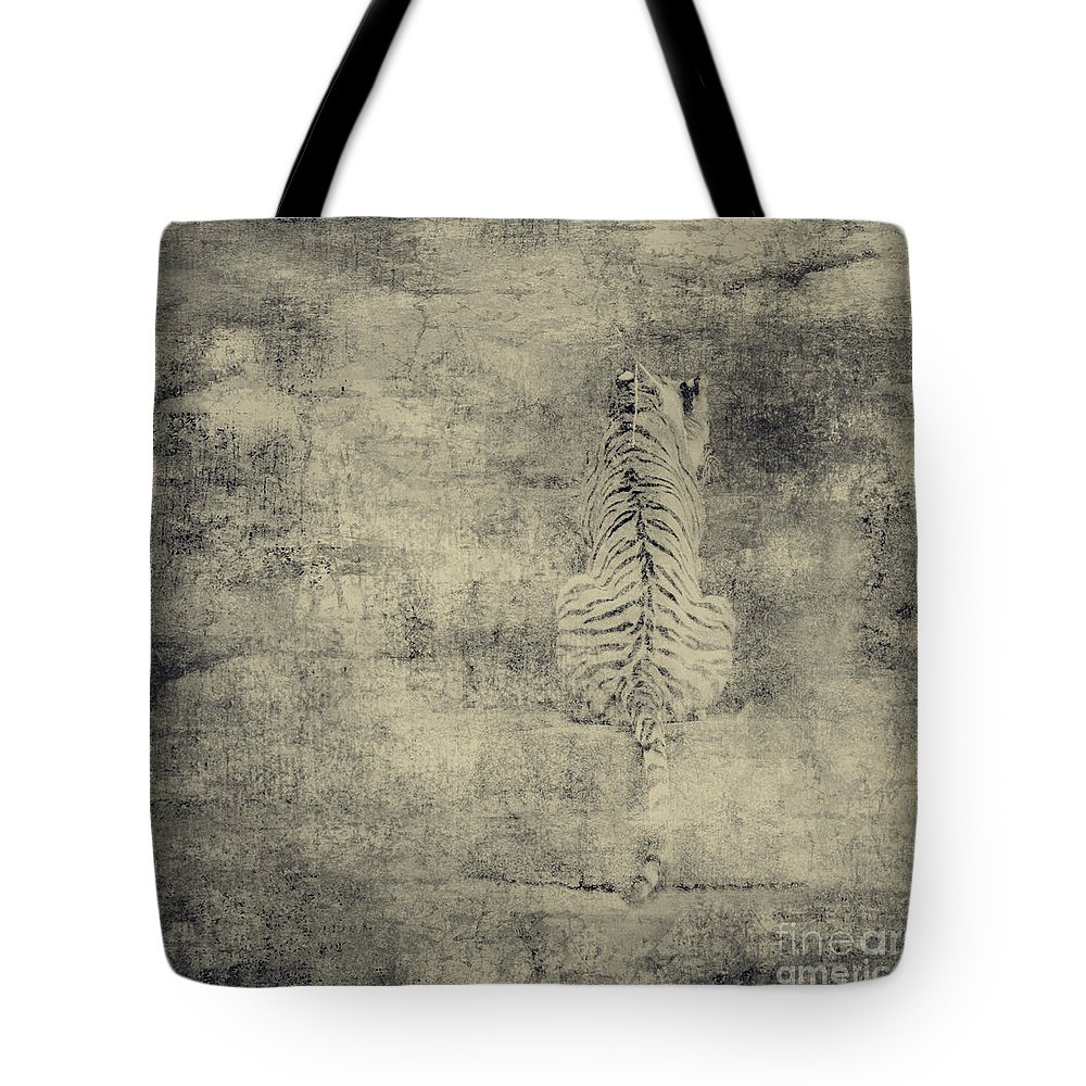 Dipasquale Tote Bag featuring the photograph Have You Comprehended... by Dana DiPasquale